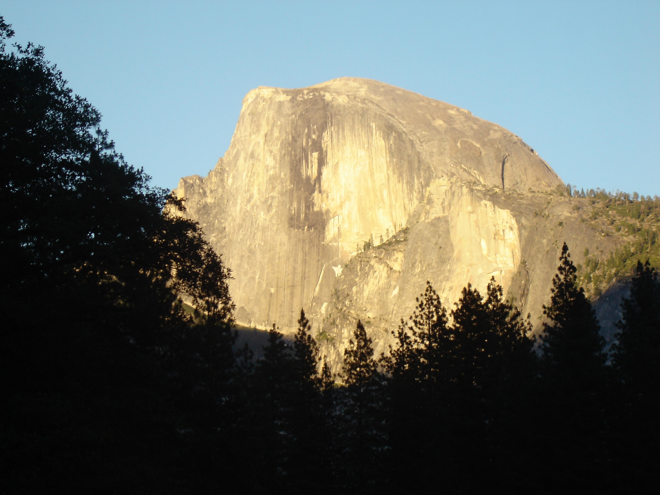 Half Dome from Valley Floor