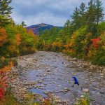 My (Weekend) Adventure: Fall Foliage