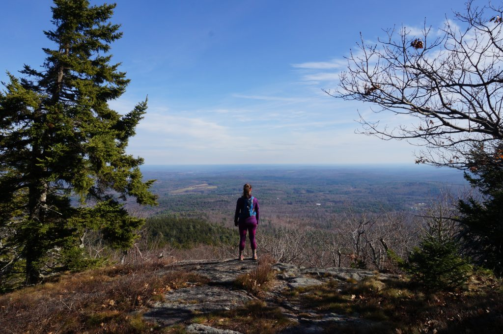 The summit of Pack Monadnock. | Credit: Tim Peck