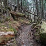 8 Reasons Not to Be an Appalachian Trail Thru-Hiker