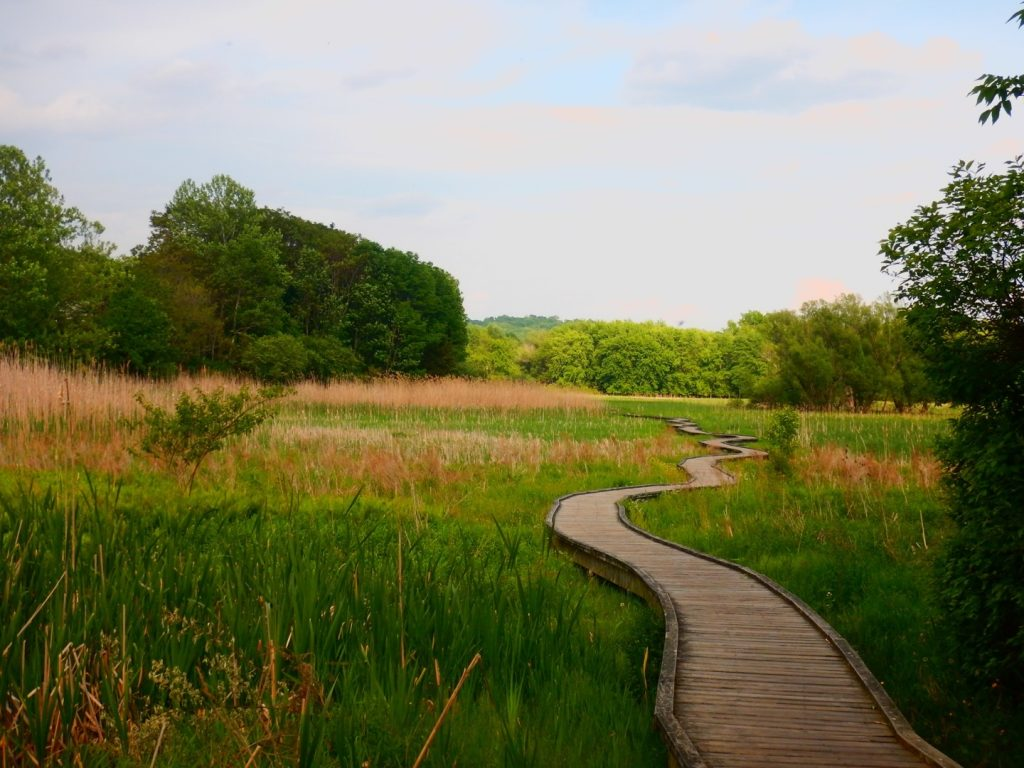 The Pochuck boardwalk on the AT in Vernon, New Jersey. | Credit: Matthew Charpentier