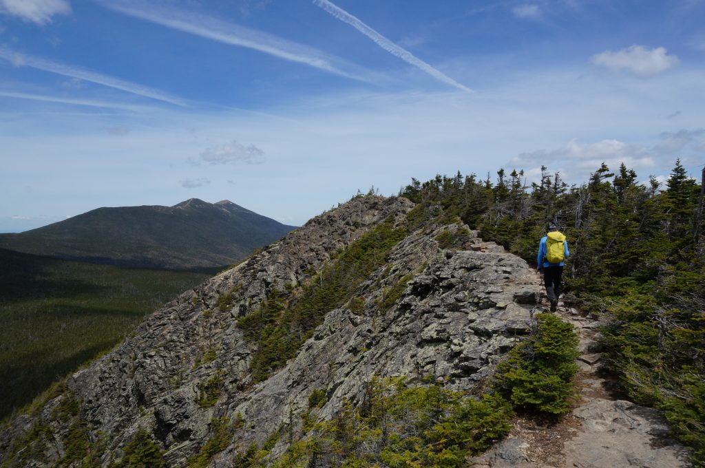 Summiting Mount Flume.   Credit: Tim Peck