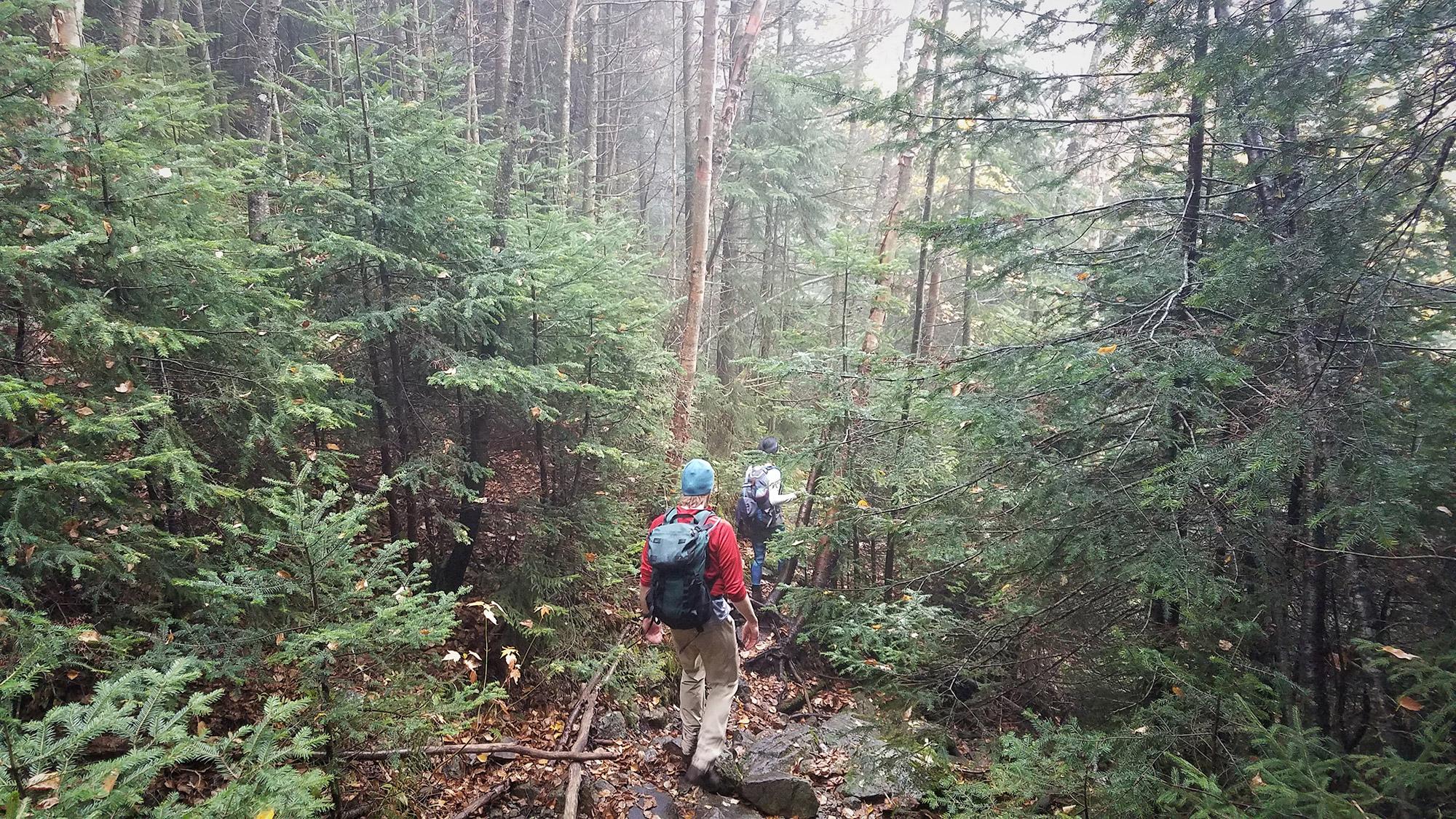 Descending to Elk Pass.   Credit: Sarah Quandt