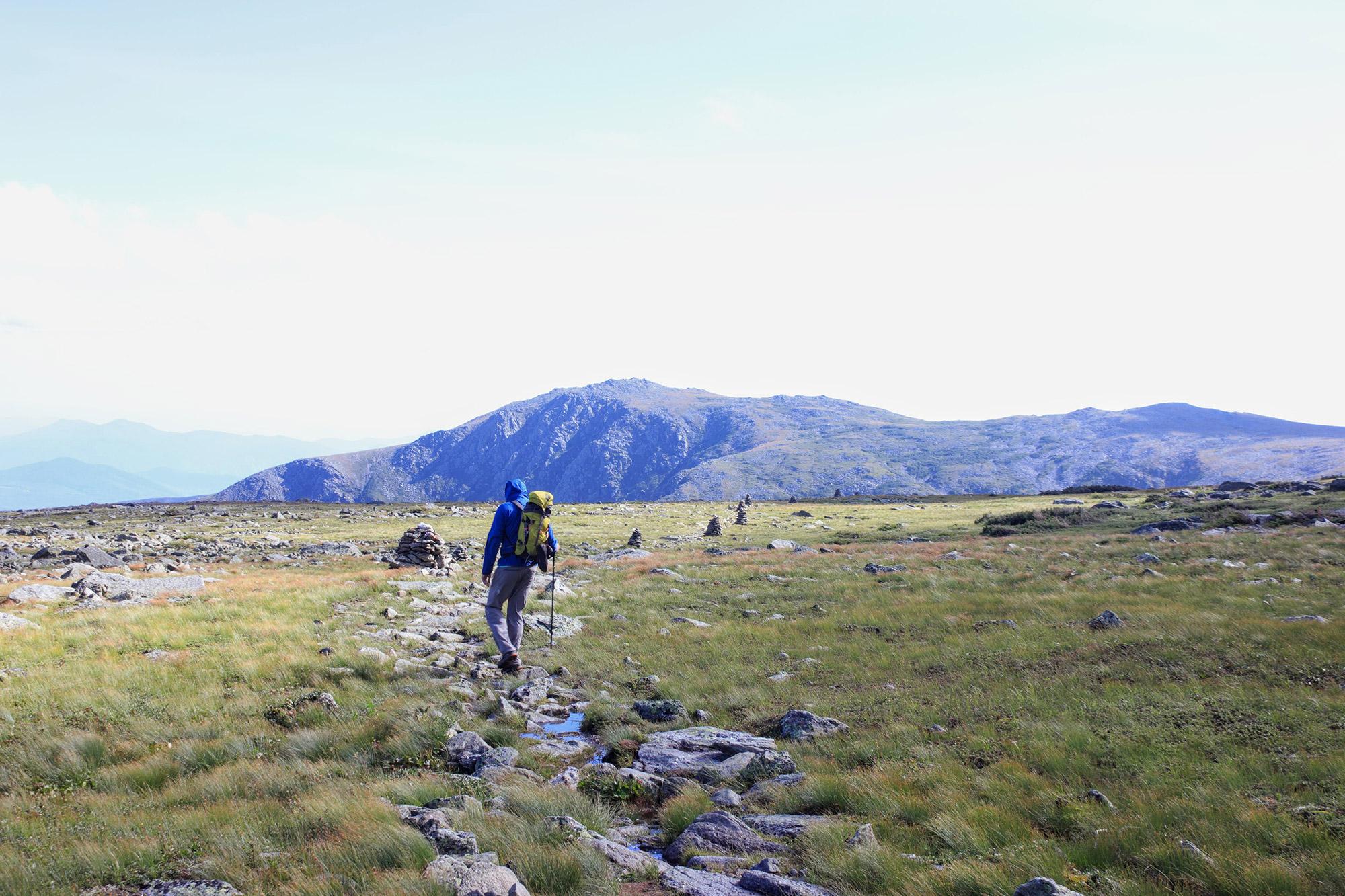 Crossing the Alpine Garden.   Credit: Tim Peck