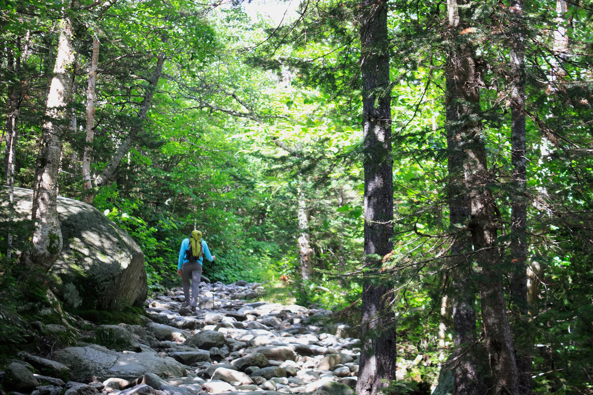 On the Tuckerman Ravine Trail. | Credit: Tim Peck