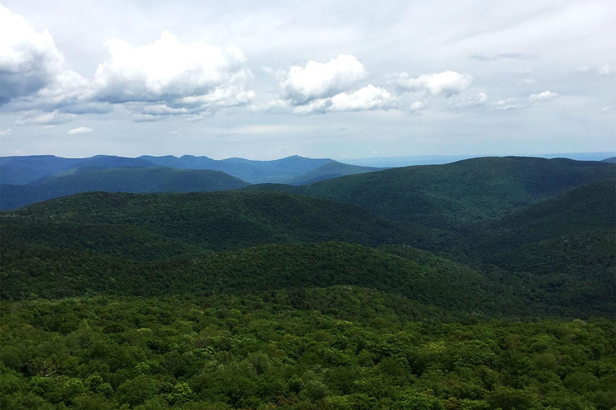 The view over Slide Mountain Wilderness from Giant Ledges.   Credit: John Lepak