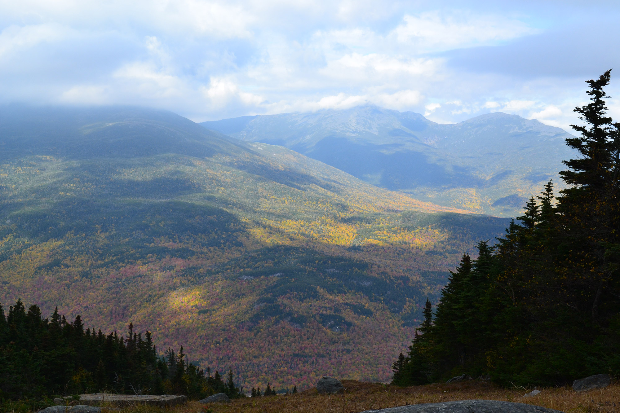 Fall foliage from near the top of Wildcat D.   Credit: Douglas Martland