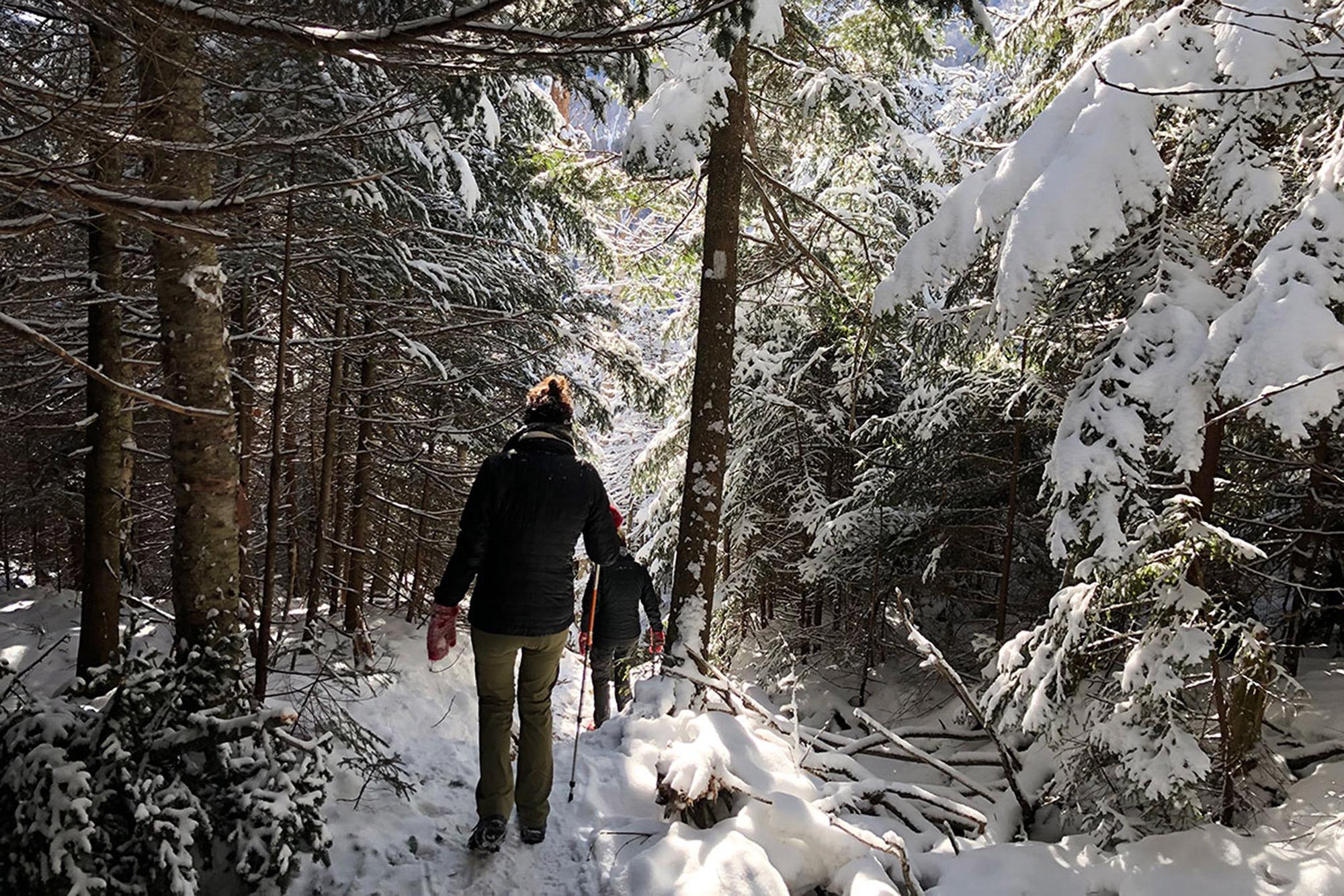 Descending the Long Trail into App Gap   Credit: John Lepak
