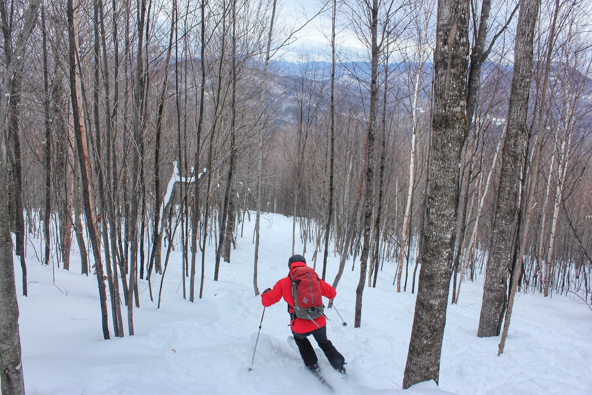 Skiing Maple Villa with Mount Washington in the distance through the trees. | Credit: Tim Peck