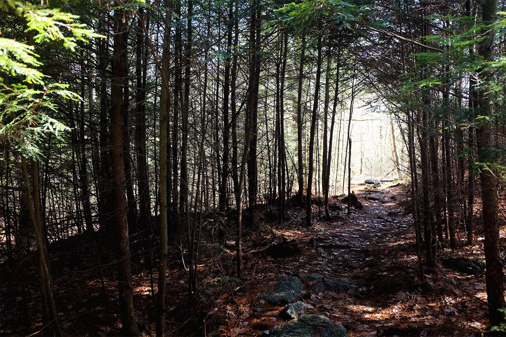 The warmer lowlands and foothills can offer a reprieve from the snow and ice of the northeast's mountains. | Credit: John Lepak