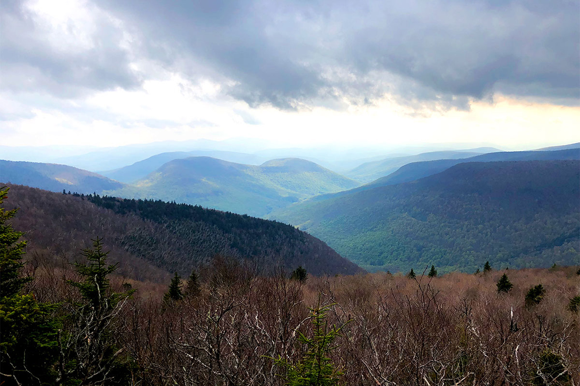 The view from Orchard Point on Plateau Mountain.   Credit: John Lepak