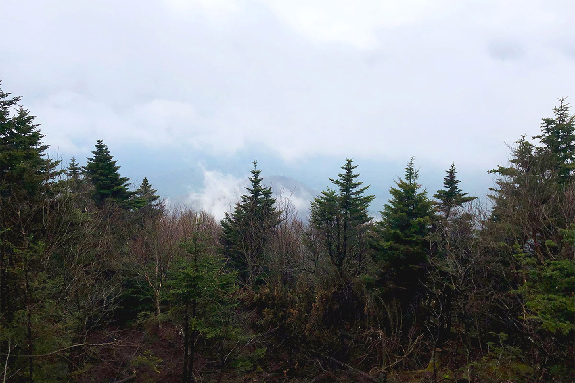 A short spur trail past Sugarloaf's summit offers a nice view when it's not in the clouds.   Credit: John Lepak