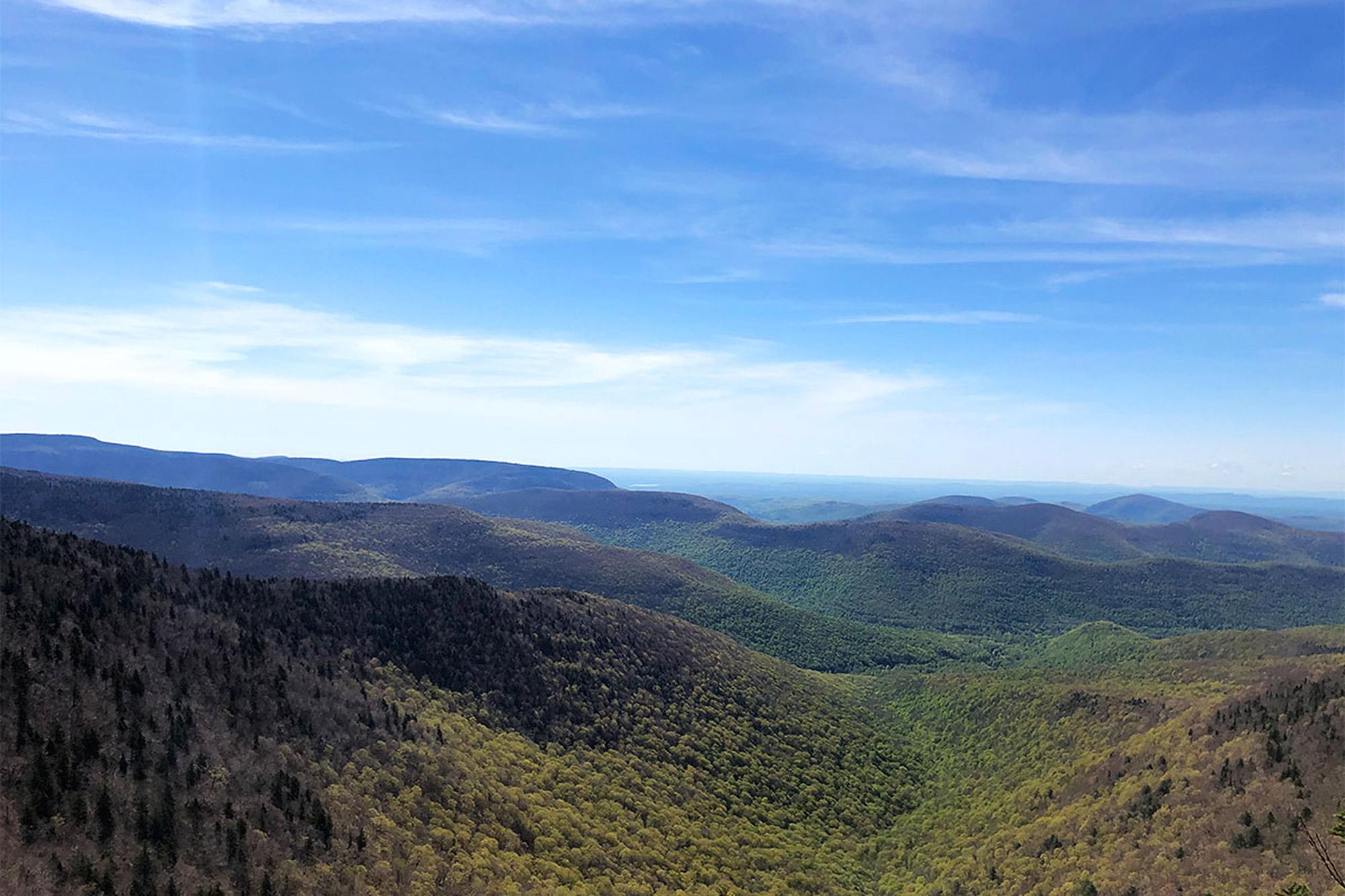 Buck Ridge Lookout, before the marked—but viewless—summit of West Kill.   Credit: John Lepak