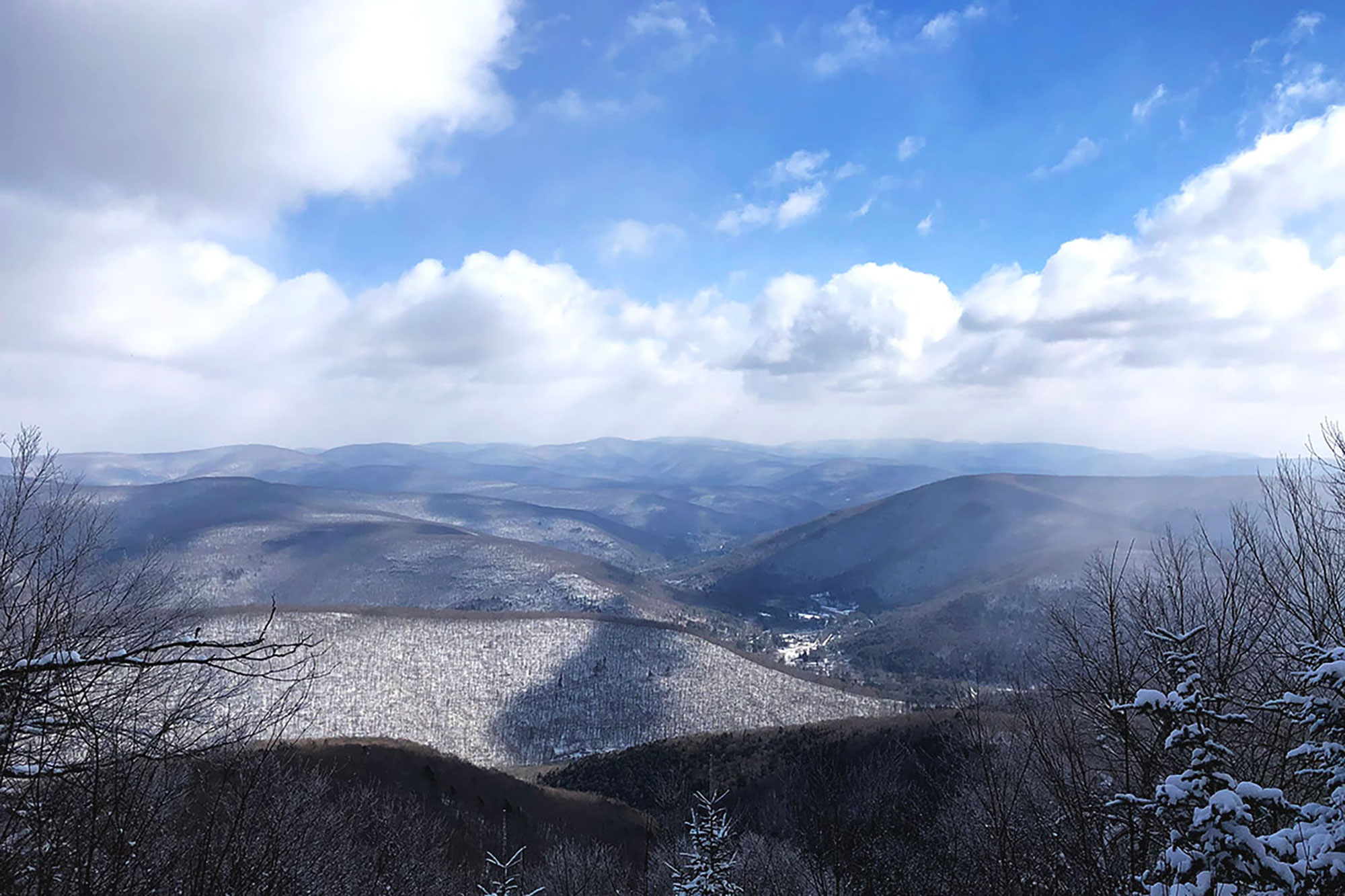 The view from the Pine Hill–West Branch Trail, just north of the summit of Balsam Mountain.   Credit: John Lepak