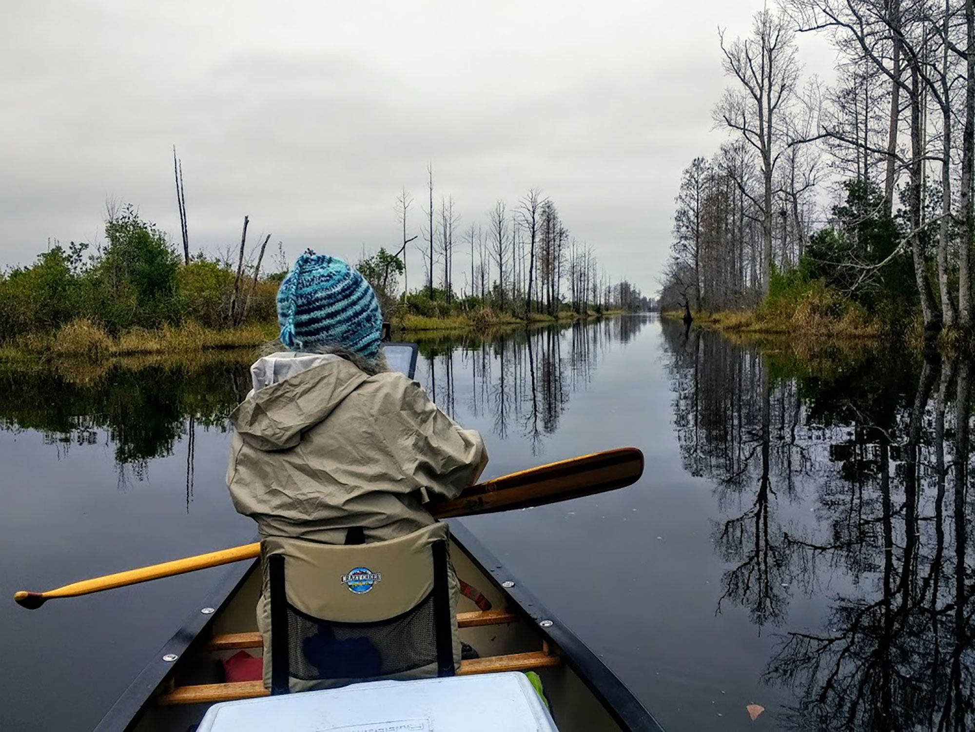 The Okefenokee Wilderness Area offers over 400,000 acres of wetlands and swamps to explore with seven overnight shelters. | Courtesy: Troy Allen Lair