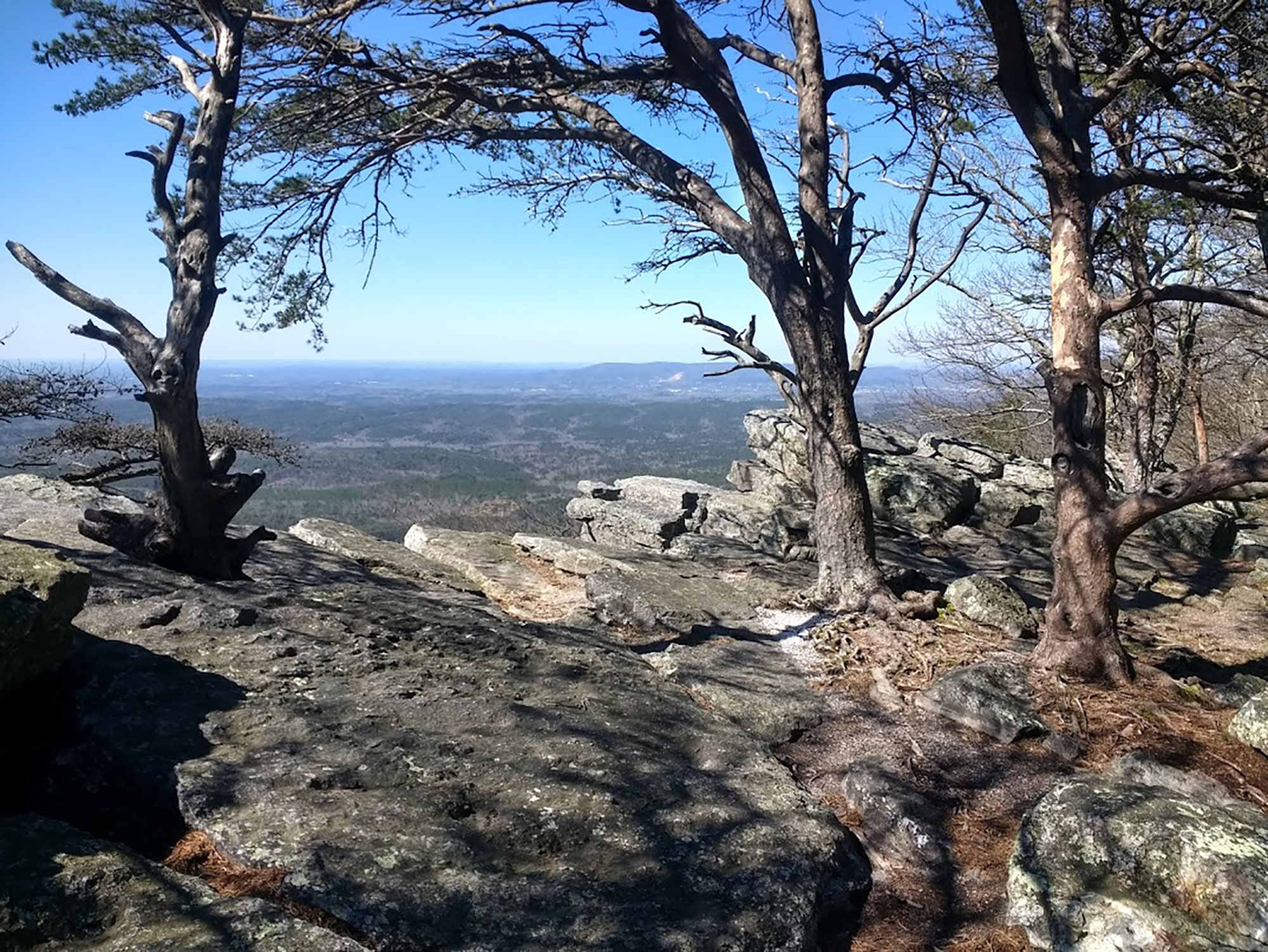 The Pinhoti Trail's Cheaha and Dugger Mountain Wilderness areas offer an otherworldly hiking experience. | Courtesy: Troy Allen Lair