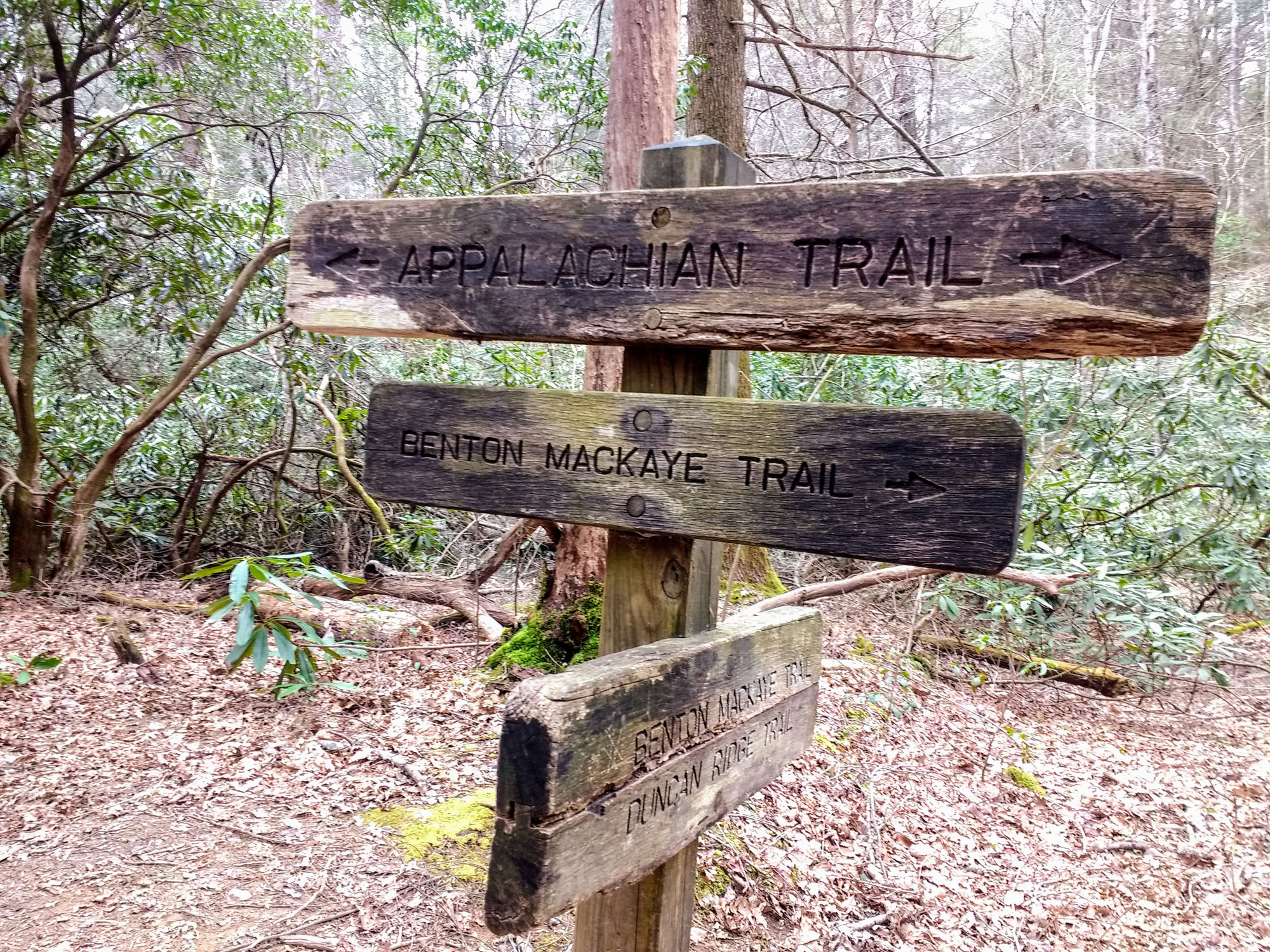 The BMT crosses the AT and numerous other trails as it winds its way through the western Appalachian range.   Credit: Karen Miller